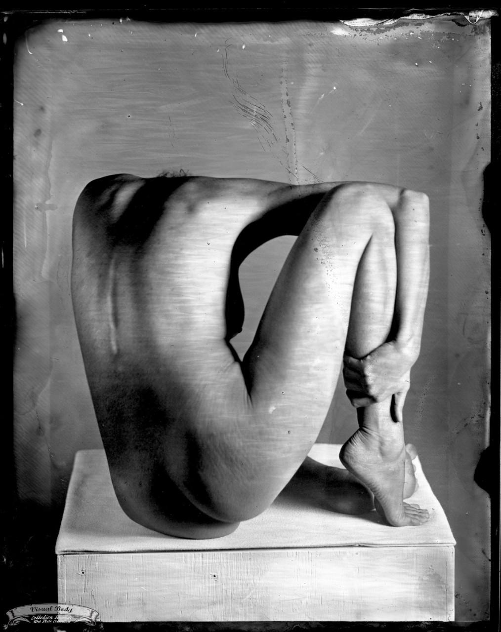 <\Sculpturata\>