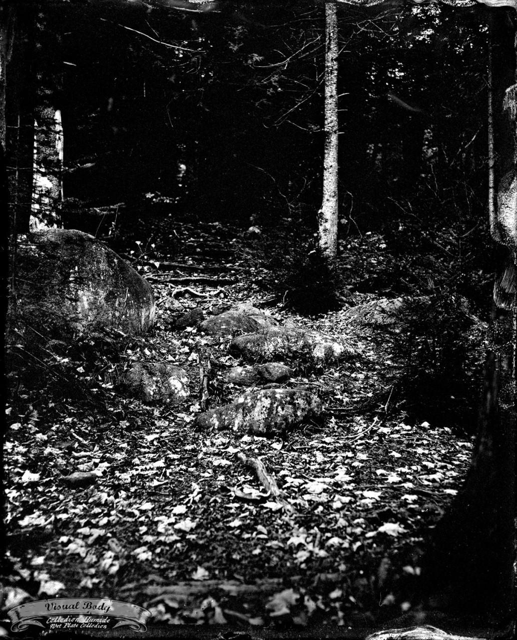 Morin-Heights, 4x5, Tintype.